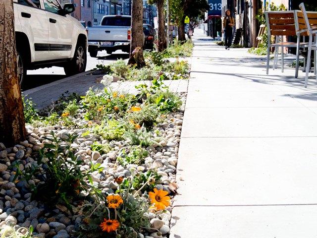 20th st greening project
